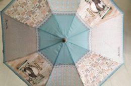 Paraguas celeste de Anekke, disponible en bastón y plegable (automático o manual).